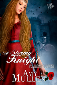 A Stormy Knight cover art