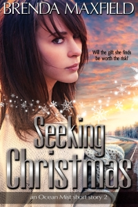 Seeking Christmas cover art