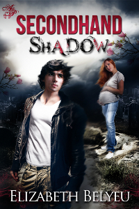 Secondhand Shadow cover art