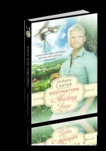 Detour: Destination Abiding Love cover art