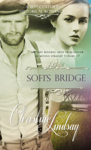 Sofi's Bridge cover art
